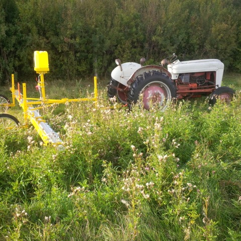 About Us Tractor In Weeds